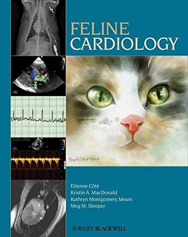 野菜西アッパーFeline Cardiology