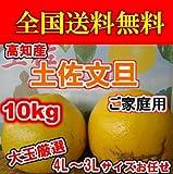 高知産土佐文旦4L~3Lサイズ・ご家庭用10kg