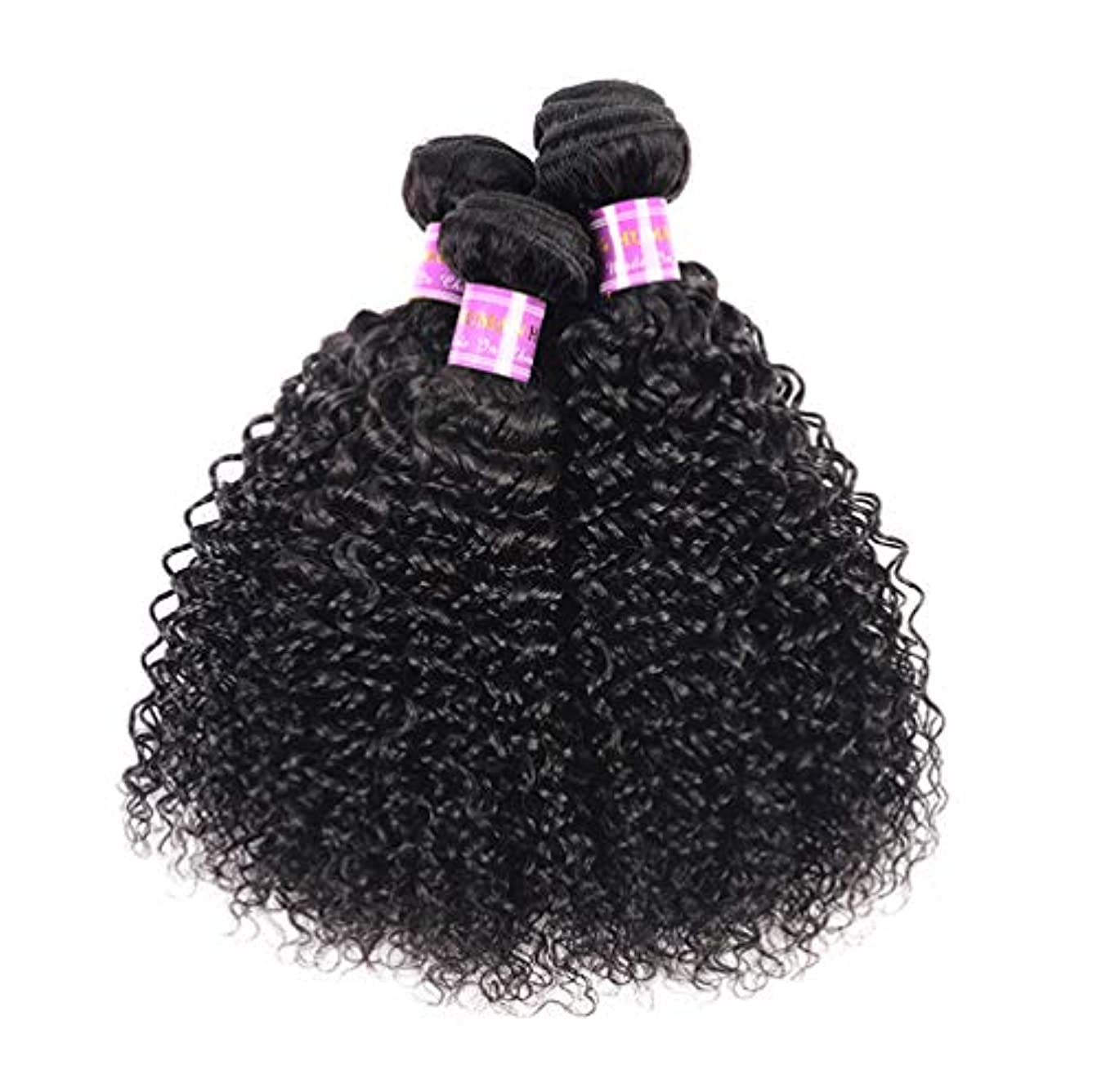 不安定な鋸歯状遺産ブラジルの毛3の束10Aブラジルボディ波のバージンの毛100%未処理1B色の二重よこ糸の人間の毛髪延長