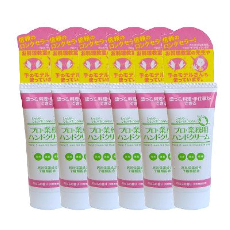 ヒューマニスティック追加薬プロ業務用ハンドクリーム(のばらの香り) 6個セット