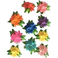 Lovoski 樹脂工芸品 樹脂ガーデン装飾 マイクロランドスケープ DIYガーデンミニチュア かわいい工芸品 10個 全4タイプ - タイプ2