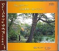 Leier-Seele vol.6 辻音楽師…光のデジャヴ