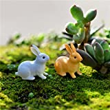 Best SODIAL(R)顕微鏡 - SODIAL ウサギの装飾品 ミニチュア置物 妖精の庭の装飾 家の装飾 ミクロ風景テラリウムのギフト Review