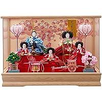 雛人形 5人アクリルパノラマケース 【舞姫】 小三五 5人飾り [間口53cm] 【fn-18】 ひな祭り
