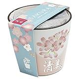 名入れ 盆栽 栽培セット 山桜