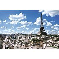 2016ベリースモールピース パズルの超達人 パリのセーヌ 河岸VII エッフェル塔周辺 フランス (50x75cm)