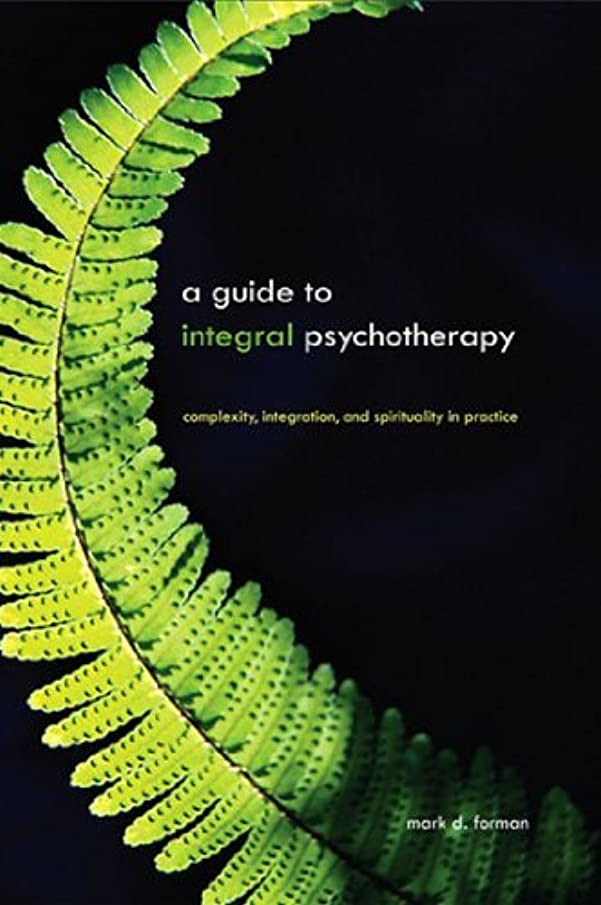 蓄積する信号空洞A Guide to Integral Psychotherapy: Complexity, Integration, and Spirituality in Practice (SUNY series in Integral Theory) (English Edition)