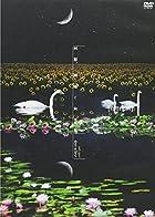 「回想、睡蓮と向日葵」 良心盤 [DVD](在庫あり。)