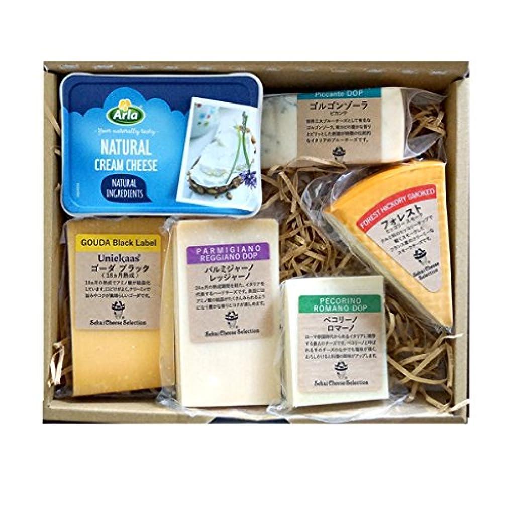 アイスクリーム起こりやすい再現するチーズ 詰め合わせ ギフト 6種類 セット