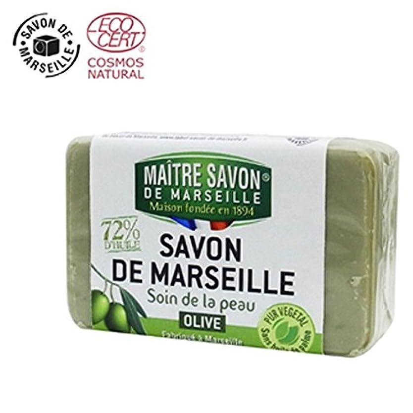 カプセル伝染性の散歩に行くサボン・ド・マルセイユ オリーブ 100g【2個セット】