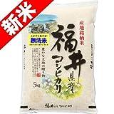 無洗米 新米 100% 福井産 コシヒカリ 5kg 29年産