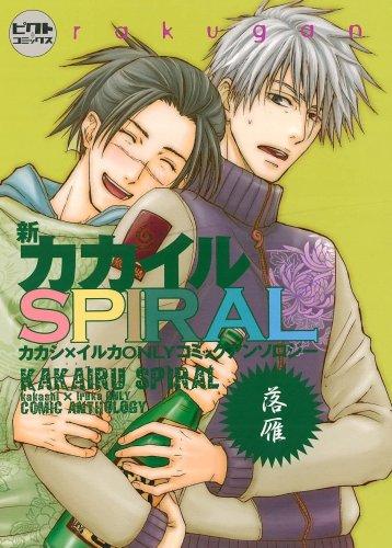 新カカイルSPIRAL ~落雁~ (ピクト・コミックス)