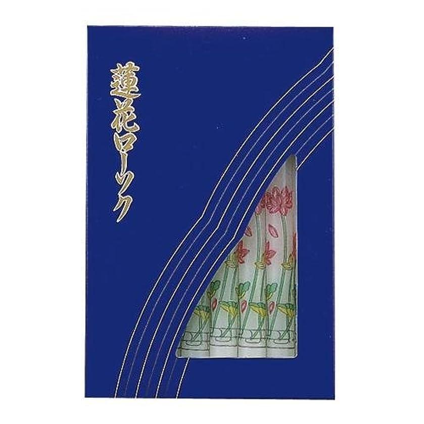 エコー風味ピジン大3号蓮花 16本入