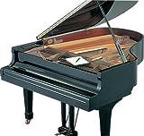 フロントフレームカバー グランドピアノ用 スケルトン FF-GS-Y