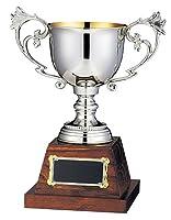 Win エイブルウィン カップ FS-73B