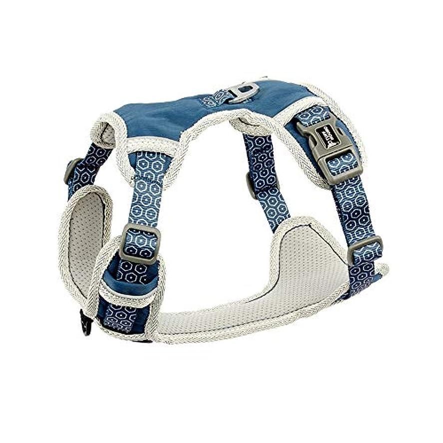 財布ベストビザ犬調節可能なペットハーネスカラーベストハーネストラクションロープウォーキングドッグトレーニングウォーキングペットハンドリーシュトラクションロープ付き犬用チェストストラップミディアムラージドッグリーシュ (blue,S)