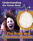 Cover of Understanding the Human Body: The Brain and Nervous System