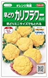 【種子】カリフラワー オレンジ美星 0.8ml