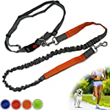 Zenify Hands Free Dog Lead for Running, Walking, Hiking, Canicross Dual Handle Comfortable Waist Belt Leash Band Reflective Stitching Adjustable Bungee Length Extendable 125cm - 190cm (Grey/Orange)