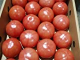 沖縄県産 トマト約2kg