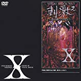 VISUAL SHOCK Vol.3 刺激 ~夢の中にだけ生きて~ [DVD]