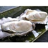 北海道・牡蠣(かき)(殻付き 生)牡蠣・厚岸西岸 仙鳳趾【牡蛎】Sサイズ20個
