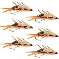 ダブルビーズピーコックStonefly Nymph with Amber Biot脚Fly Fishing Flies–Trout and Bass濡れFlyパターン–6Fliesフックサイズ10