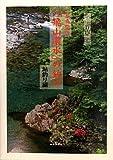 写真紀行「飛山濃水」の釣り 鮎釣り編