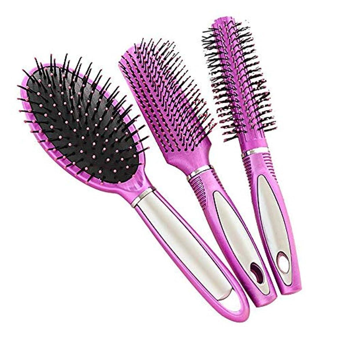 スロベニア改修優先帯電防止プラスチック製のヘアブラシ、すべての髪の種類のためのヘアマッサージDetangler(3PCS)