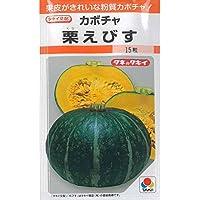 カボチャ 南瓜 種子 栗えびす かぼちゃ (22粒)