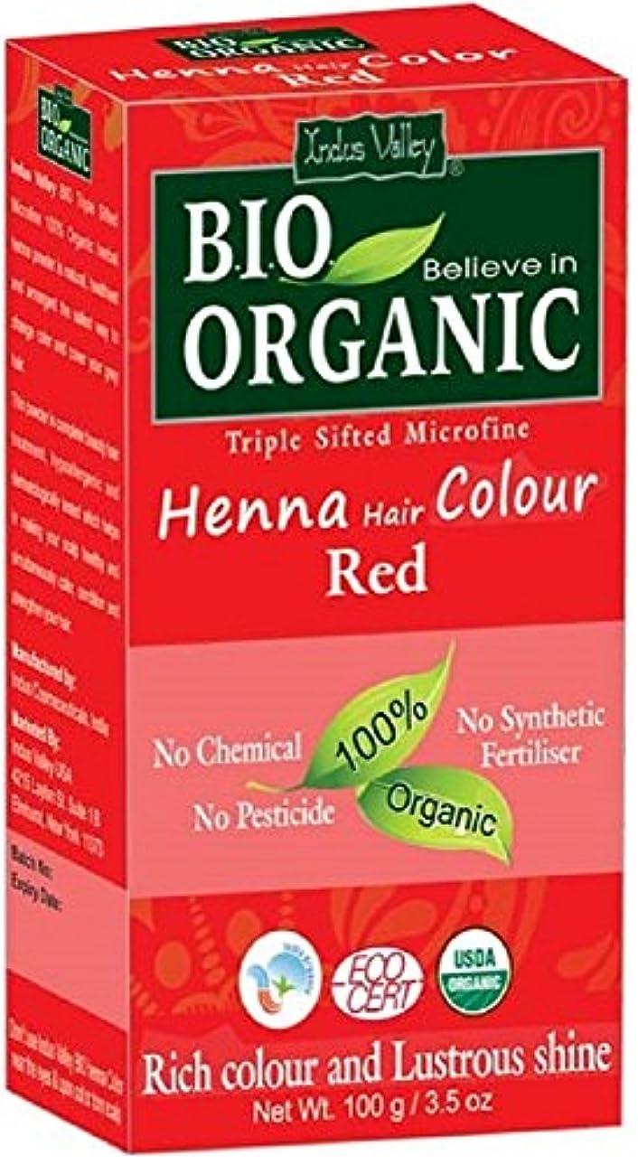 ヘナ白髪染め100%バイオトリプルふるい分けマイクロファインパウダー(レッド)