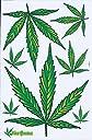 (シャシャン)XIAXIN 防水 PVC製 ステッカー セット 大麻 マリファナ cannabis ヘンプ アサ marijuana 麻 Marihuana 屋内外 兼用 TS-120