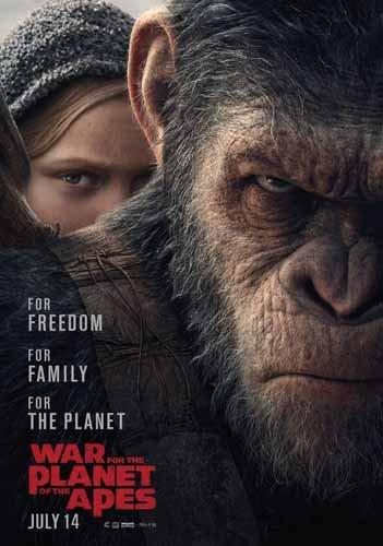 ポスター/スチール写真 アクリルフォトスタンド入り A4 パターン5 猿の惑星 聖戦記 光沢プリント