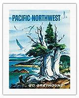 太平洋岸北西部 - グレイハウンド - ビンテージな世界旅行のポスター によって作成された S.フレミング c.1958 - キャンバスアート - 51cm x 66cm キャンバスアート(ロール)