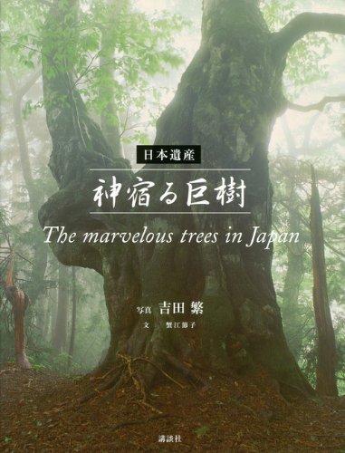 日本遺産 神宿る巨樹 The marvelous trees in Japanの詳細を見る