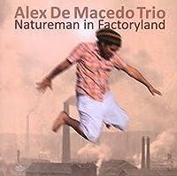 Natureman in Factoryland
