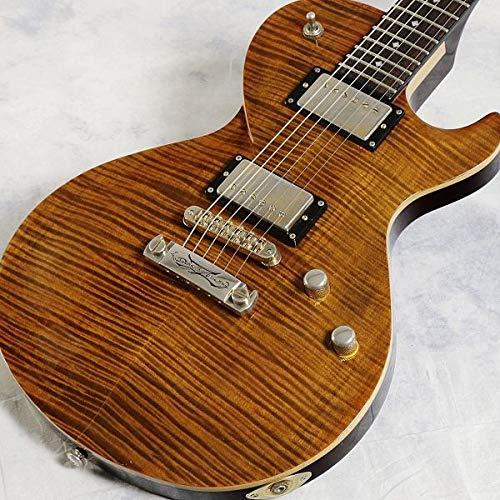 DBZ Guitars/Premium Series Bolero FM Tiger Eye