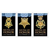 おもちゃ Medal of Honor: Vietnam War Prestige Folio - USPS Forever Stamp - Sheet of 24 [並行輸入品]
