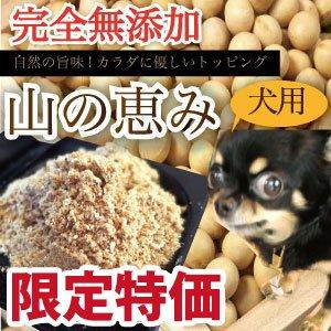 山の恵み 100g 犬 手作りご飯 手作りごはん 無添加 国産 低カロリー ヘルシー ダイエット