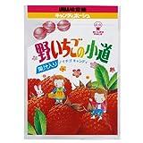 味覚糖   野いちごの小道  10ツブ×10袋