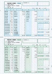 ソリマチ 給与・賞与明細書(明細型)100枚入 SR2101