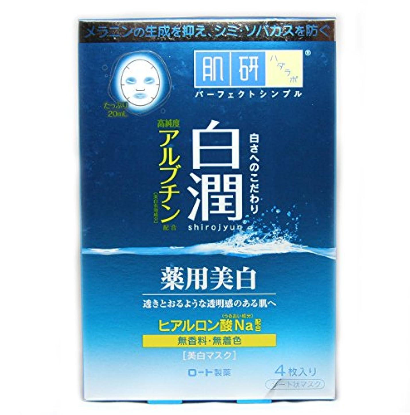優先艦隊勘違いする肌研白潤薬用美白マスク