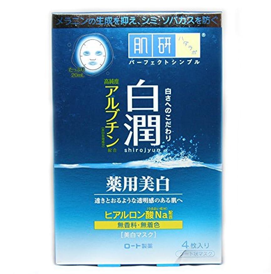 残り重要性ハードリング肌研白潤薬用美白マスク