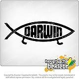 ダーウィンの魚 Darwin fish 15cm x 5cm 15色 - ネオン+クロム! ステッカービニールオートバイ
