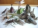 再販 原色 日本 昆虫 図鑑 I シークレット 入 12種 スズメバチ 全12種 未開封 ミニブック付 1 オニヤンマ2