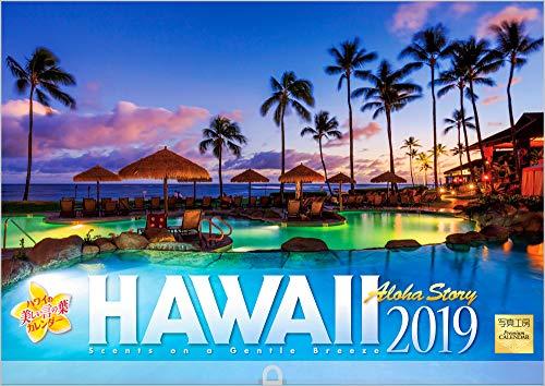 ハワイ 2019年 カレンダー 壁掛け SD-3 (使用サイ...