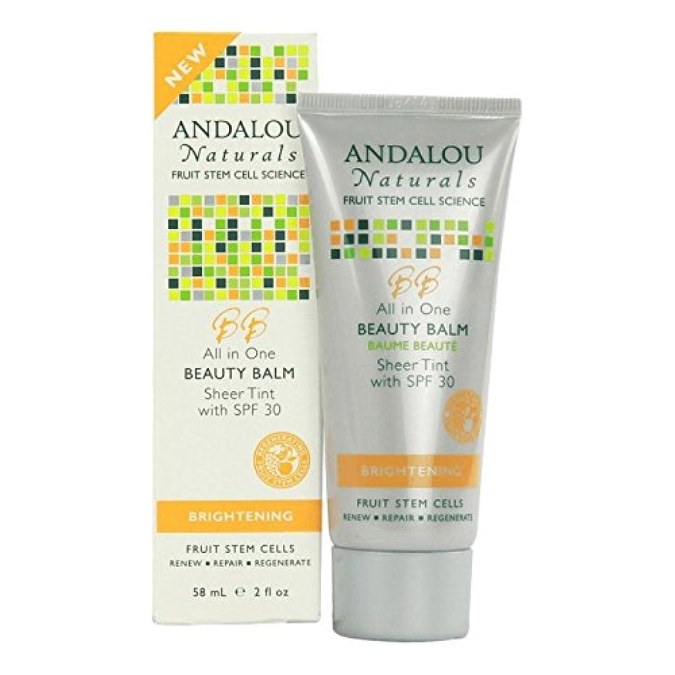 ママバウンス語Andalou All in One Beauty Balm Sheer Tint SPF 30 58ml (Pack of 6) - アンダロウすべての1の美しさバームシアーティントSpf 30 58ミリリットル (x6...