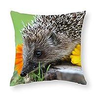 TANGANGEL動物ハリネズミ棘花テーマスクエアショート豪華な枕カバークッション毎日の装飾ソファギフトクリエイティブホーム枕カバー18 x 18インチジッパー付き