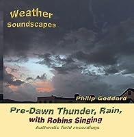 Pre-Dawn Thunder Rain with Robins Singing【CD】 [並行輸入品]