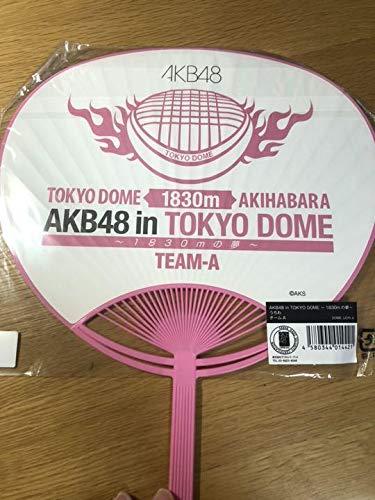 「AKB48」のライブ攻略法ここにあり!最大限に楽しむ方法教えます!ライブ定番曲もマスターしよう♪の画像